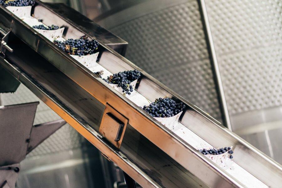 Fresh Produce Conveyor Solution